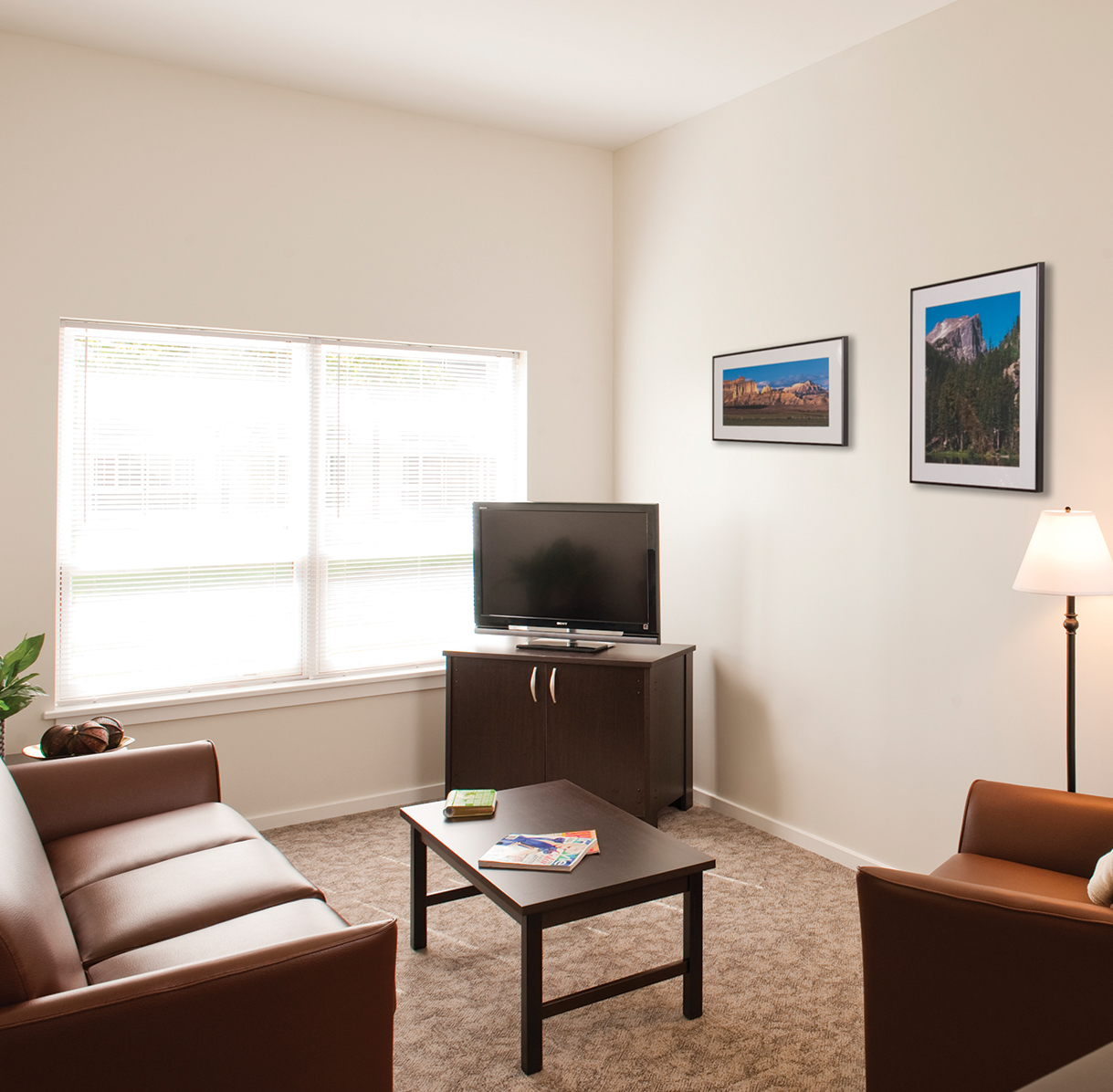 Floor Plans Park Point Syracuse Student Apartments In