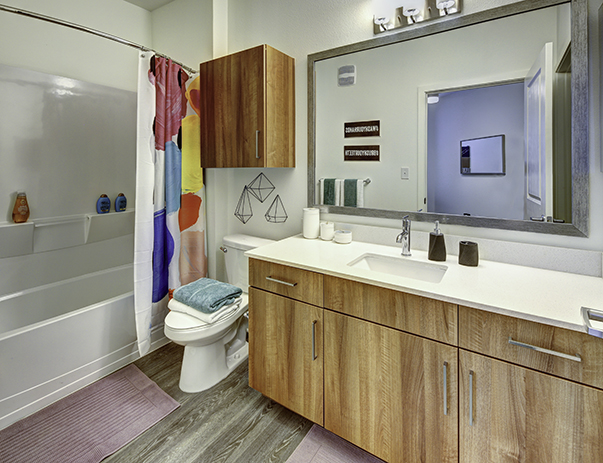 Bathroom at Callaway House Apartments