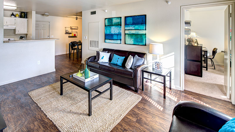 Lubbock tx student housing student apartments - Swimming pool supplies lubbock tx ...